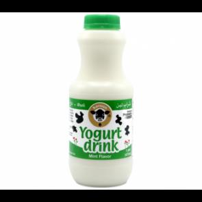 Karoun Yogurt drink mint